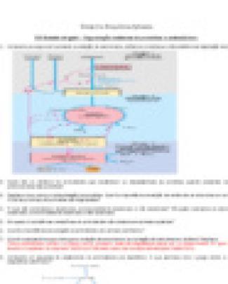13º- Estudo Dirigido - Degradação Oxidativa De Proteínas E Aminoácidos