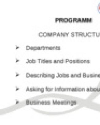 Estrutura Orgânica Da Empresa-1ª Sessão